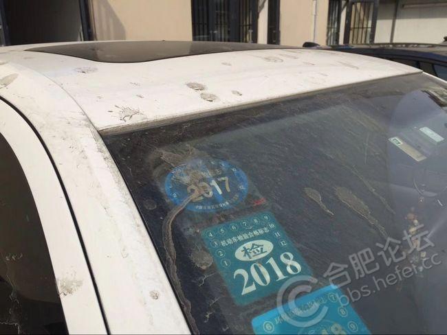 洗车、.jpg