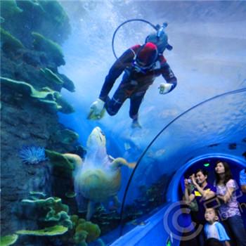 夜宿海洋馆海底总动员招募啦