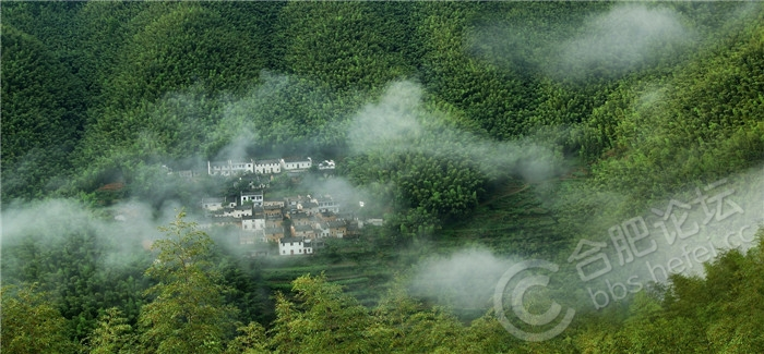 家在云雾飘渺中   仲晓摄.jpg