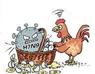 安徽连续25天无H7N9病例