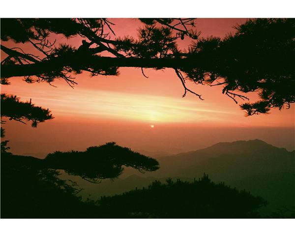 夕阳似火.JPG