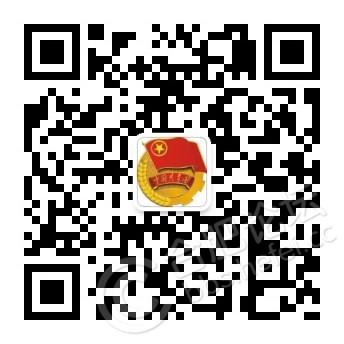 庐阳区团委.jpg