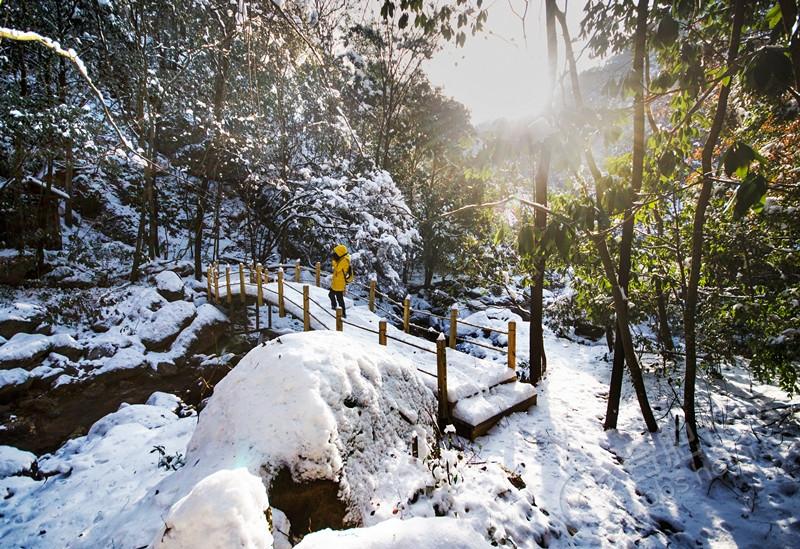 湛蓝色的天空,白雪皑皑的苍茫林海,千奇百怪的雾凇,还有数不尽的松树