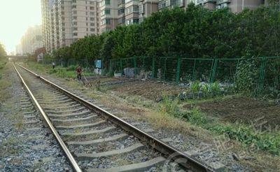 合肥:匡河边铁轨旁有人在种植蔬菜 太危险