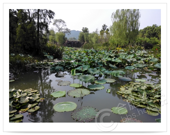 合肥人文景观_大美庐江集历史人文景观于一体的合肥后花园