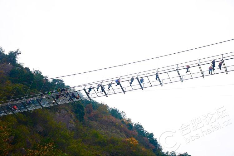 天柱山白水湾景区空中会动的玻璃桥! - 旅游信息
