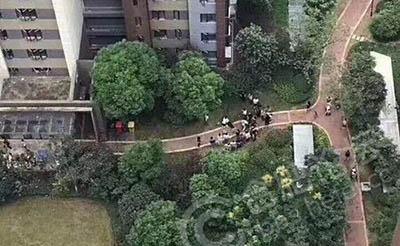 【悲剧】合肥滨湖某小区内,一女子坠楼身亡!