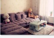 沙发 500元
